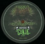 Jungle Alliance 02